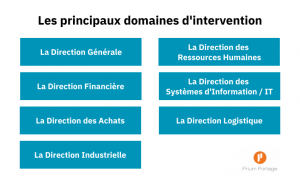 Les interventions en management de transition